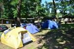 Pole namiotowe - Ośrodek Martinez