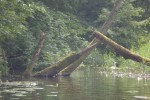 Na trasie spływu kajakowego po Paklicy (Lubrza-Gościkowo)